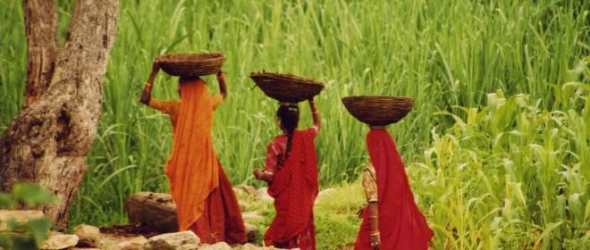 La India. Otras formas de viajar